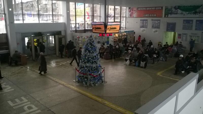 На тверском автовокзале установили новогоднюю ель