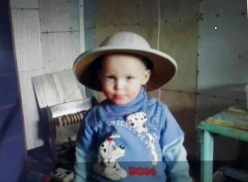 фото Следователи просят оказать помощь в поисках пропавшего 2-летнего мальчика