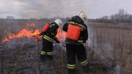 фото В Тверской области прошла тренировка по ликвидации лесных пожаров