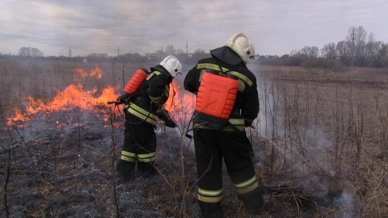 В Тверской области прошла тренировка по ликвидации лесных пожаров