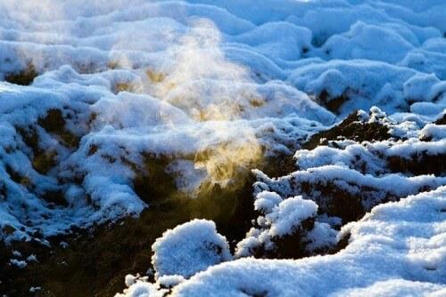 фото В Тверской области начинают тлеть торфяники