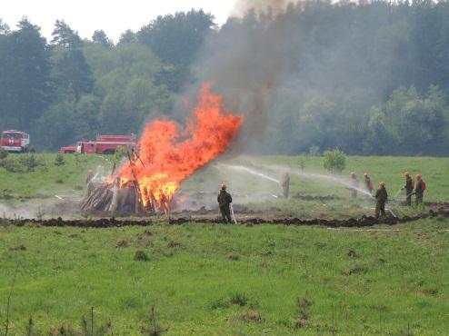 В Конаковском районе пройдут межрегиональные лесопожарные учения