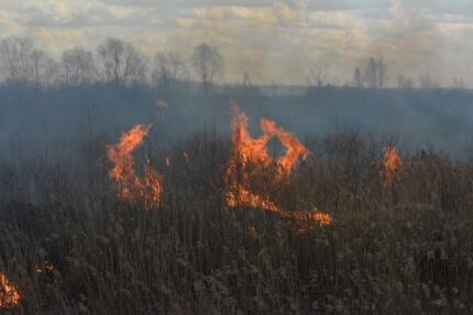 фото 9 мая тверские пожарные 16 раз выезжали на тушение горящей травы и около 60 раз на тушение мусора