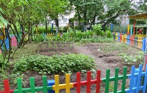 фото В областном центре пройдет конкурс на лучший участок детского сада