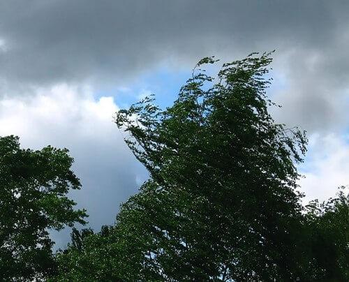 фото На территории Тверской области объявлено штормовое предупреждение