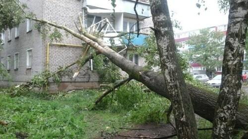 """фото По Кимрам и ближайшим окрестностям """"прошелся"""" ураганный ветер"""