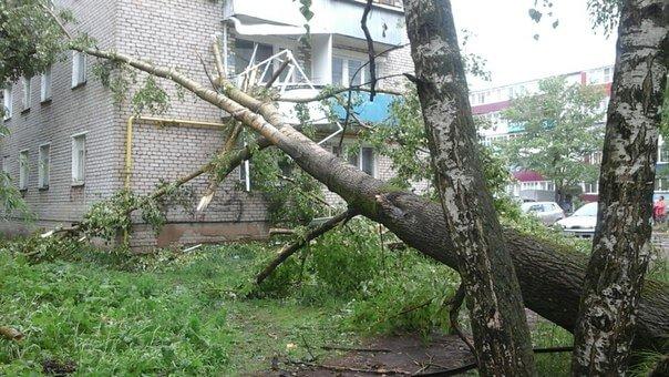 """По Кимрам и ближайшим окрестностям """"прошелся"""" ураганный ветер"""