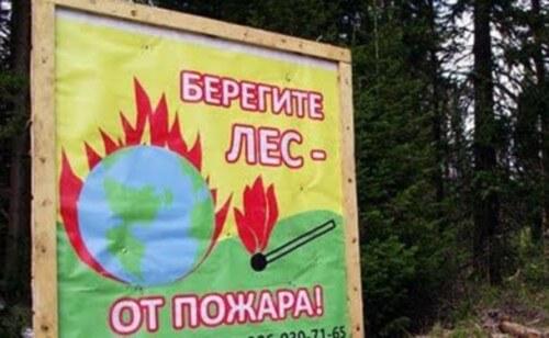 фото Главное управление МЧС России по Тверской области напоминает правила безопасности при походе в лес