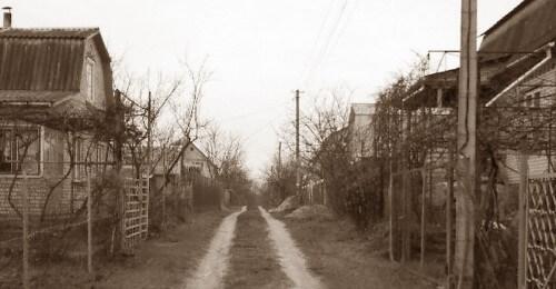 фото В Селижаровском районе задержали серийного дачного вора