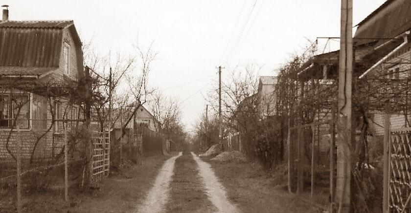 В Селижаровском районе задержали серийного дачного вора