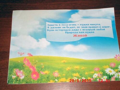фото В Сандовском районе прошел конкурс на лучший слоган по охране природы от лесных пожаров