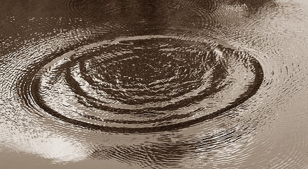 На озере Селигер утонул мужчина