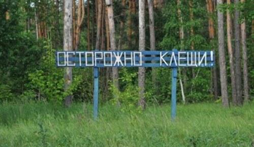 фото В Тверской области клещи покусали более 6 тысяч человек