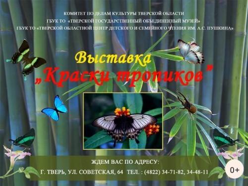"""фото В Твери открывается выставка """"Краски тропиков"""""""
