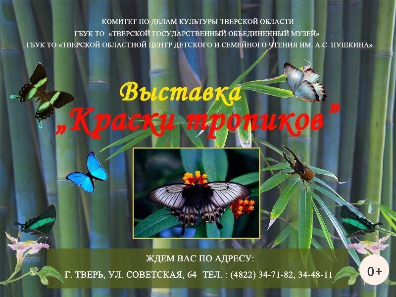"""В Твери открывается выставка """"Краски тропиков"""""""