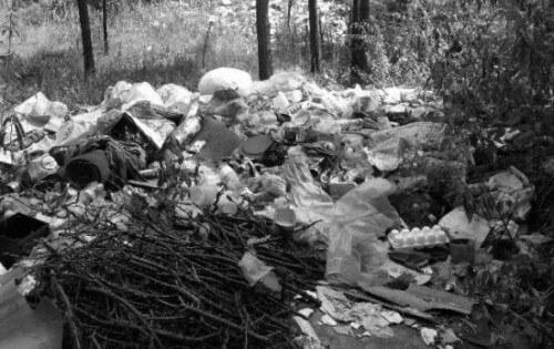 фото В Зубцовском районе ликвидированы свалки мусора на особо охраняемых природных территориях