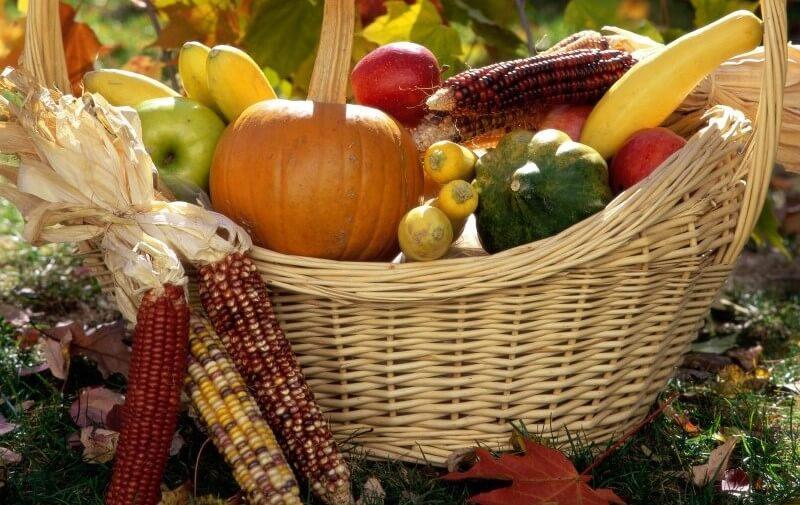Тверичей приглашают на традиционный праздник урожая