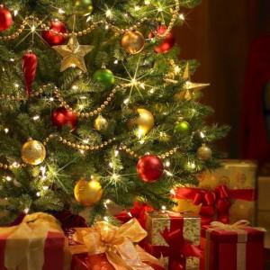 фото Елки к Новому году в Твери начнут продавать 20 декабря