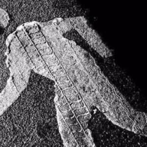 фото Вынесен приговор водителю, который в состоянии опьянения насмерть сбил человека