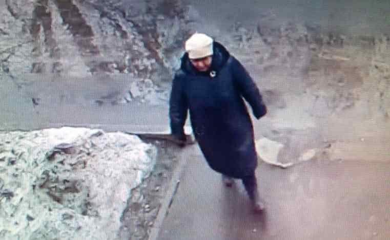 В Твери разыскивают мошенниц, ограбивших пенсионерку
