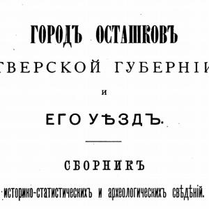 скачать книгу Город Осташков Тверской губернии и его уезд