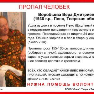 фото В поселке Пено пропала пожилая женщина