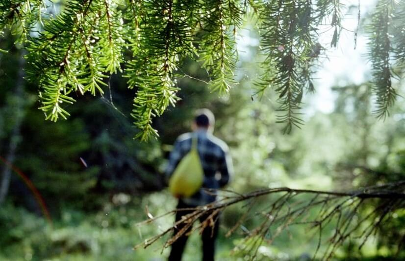 В лесу под Тверью заблудились 5 человек, в том числе 2 ребенка