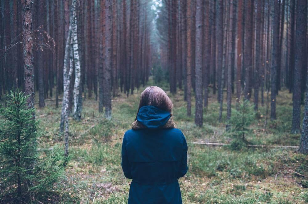 В Конаковском районе спасатели разыскали людей, заблудившихся в лесу