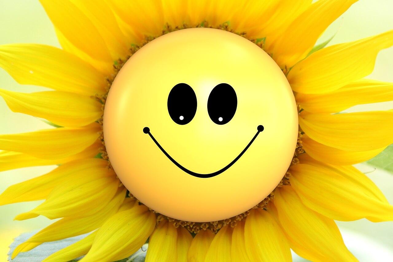 Открытки большая улыбка