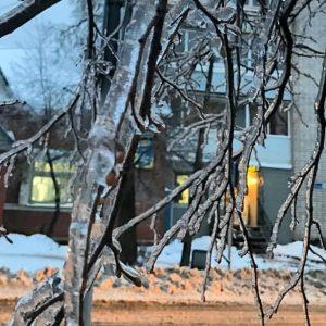 фото В Тверской области ожидается сильный снег и ледяной дождь