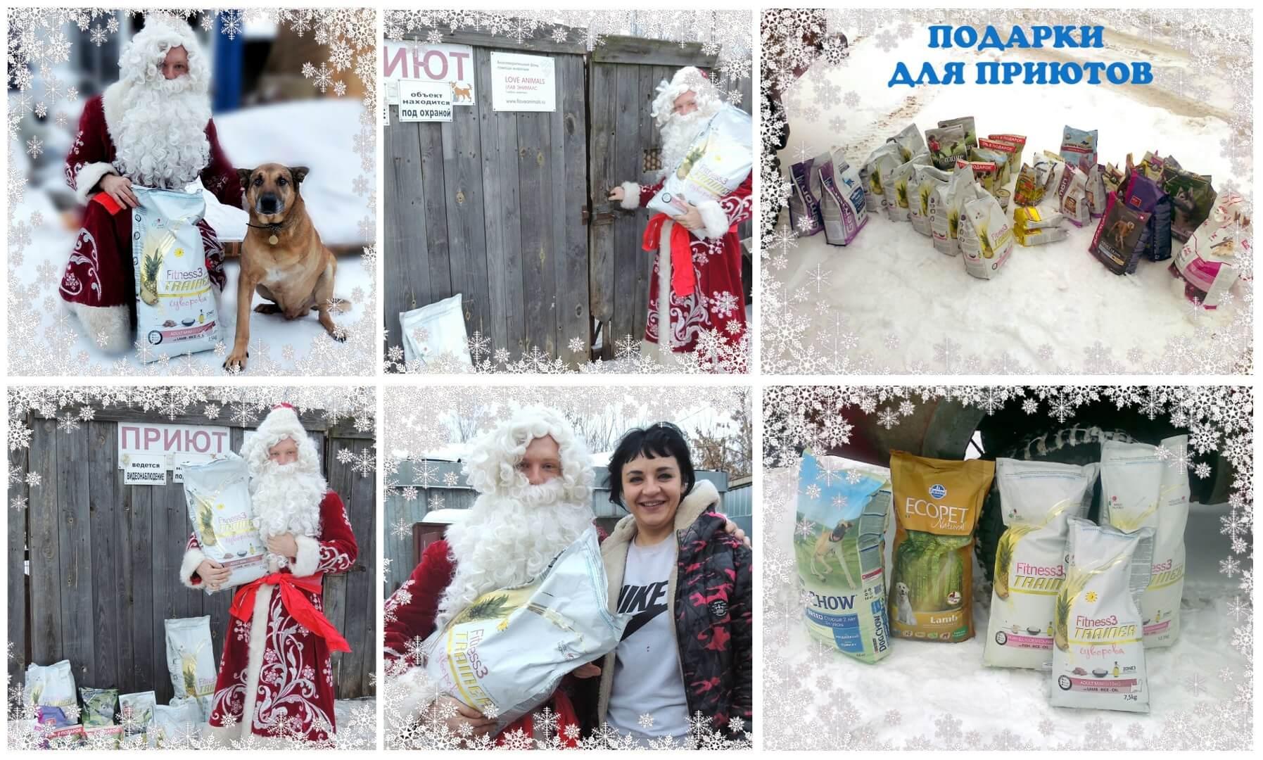 Дед Мороз для четырехлапиков