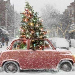 фото В новогодние праздники сообщать о проблемах на автодорогах регионального и межмуниципального значения можно будет круглосуточно