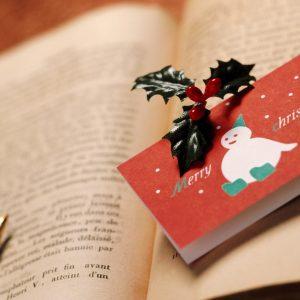 фото В Твери пройдет большой новогодний книгообмен