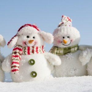 фото Тверская область присоединится к Всероссийскому дню снега