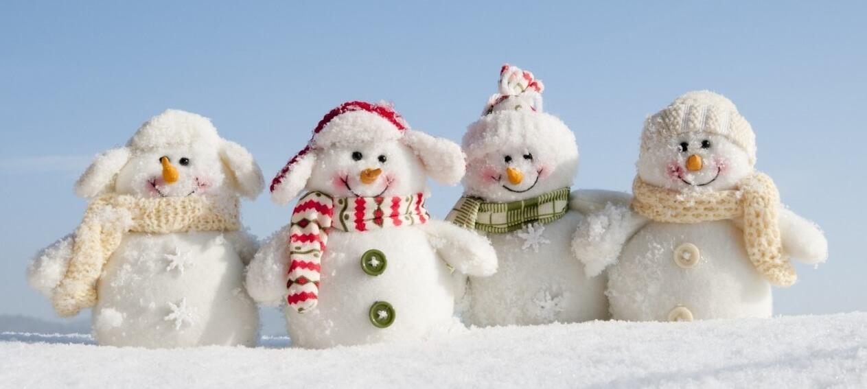 Тверская область присоединится к Всероссийскому дню снега