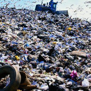 фото Лихославль лишился свалки бытовых отходов