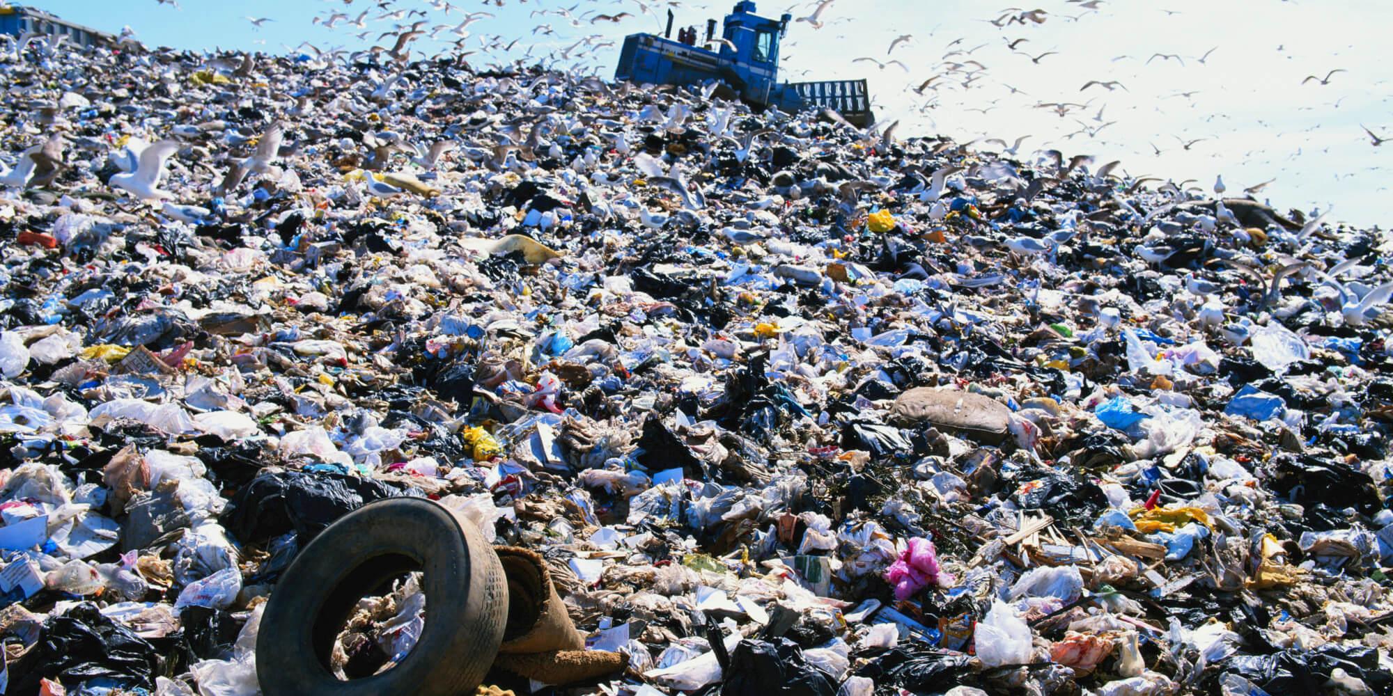 Лихославль лишился свалки бытовых отходов
