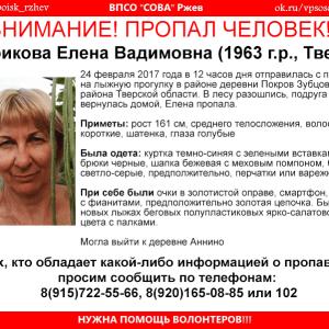 фото (Найдена, погибла) В Зубцовском районе пропала Елена Сурикова