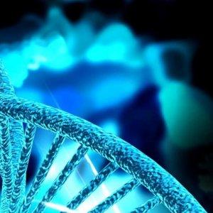 фото В Твери пройдет международная конференция по репродуктивной генетике