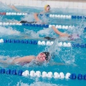 фото В Торжке прошло областное первенство по плаванию