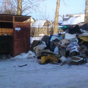 фото Тверские активисты ОНФ добились ликвидации незаконной свалки в Зубцове