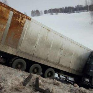 фото В Оренбуржье водитель из Тверской области бросил на дороге фуру с тиграми
