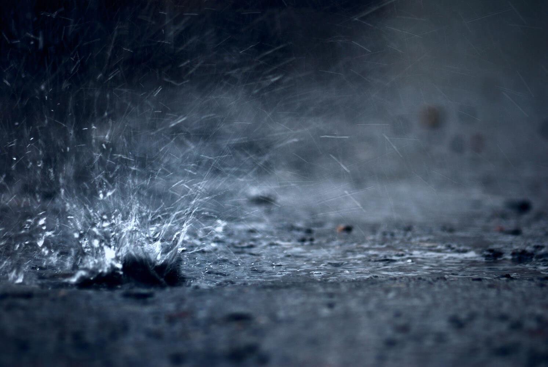 Тверскую область продолжат заливать майские дожди