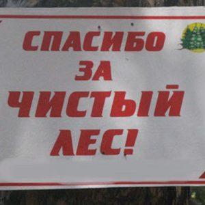 "фото В рамках акции ""Чистый лес"" на территории области очищено от мусора 263 гектара леса"
