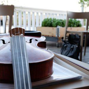 фото В Твери пройдет летний концерт классической музыки