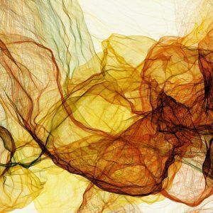 фото В Твери пройдет выставка молодых художников современного и классического искусства