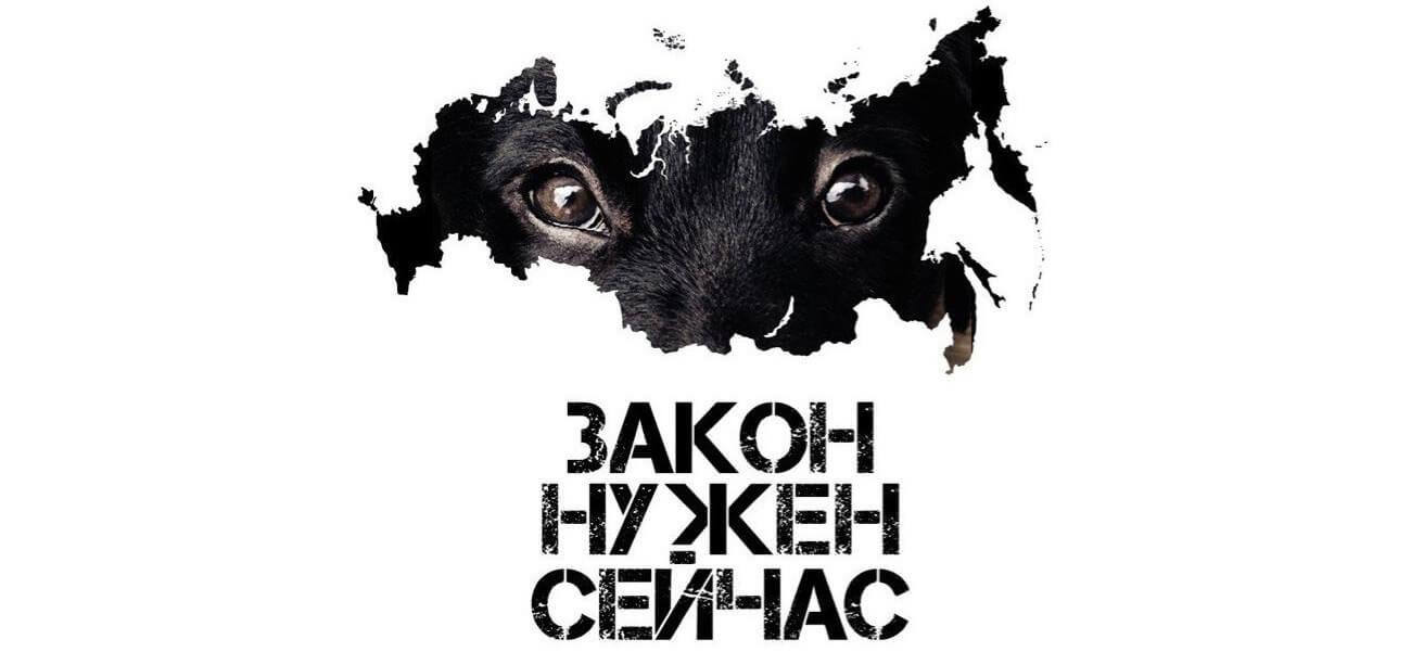 Тверь присоединится к Всероссийскому митингу в поддержку принятия закона о защите животных