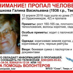 фото Волонтеры разыскивают в Твери пропавшую пожилую женщину