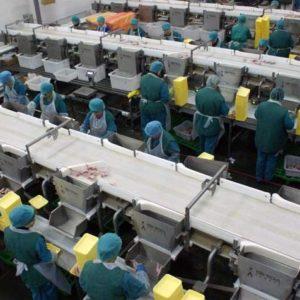 фото Кадровый дефицит: в каких специалистах нуждаются тверские производители