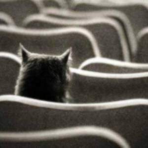 фото Театральный год: рассуждения в буфете